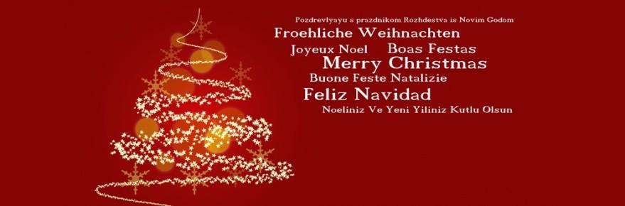 msplus wünscht frohe Weihnachten